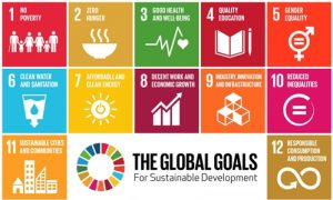 Sustainable Development Goals – Margaret Clark