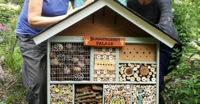 September 2017 SI Grange over Sands sensory garden bug house