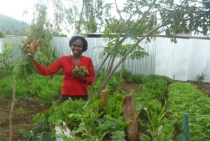 Meru Women's Garden Project