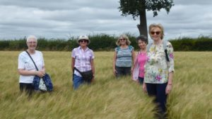 club members enjoying a scially distanced walk in the summer
