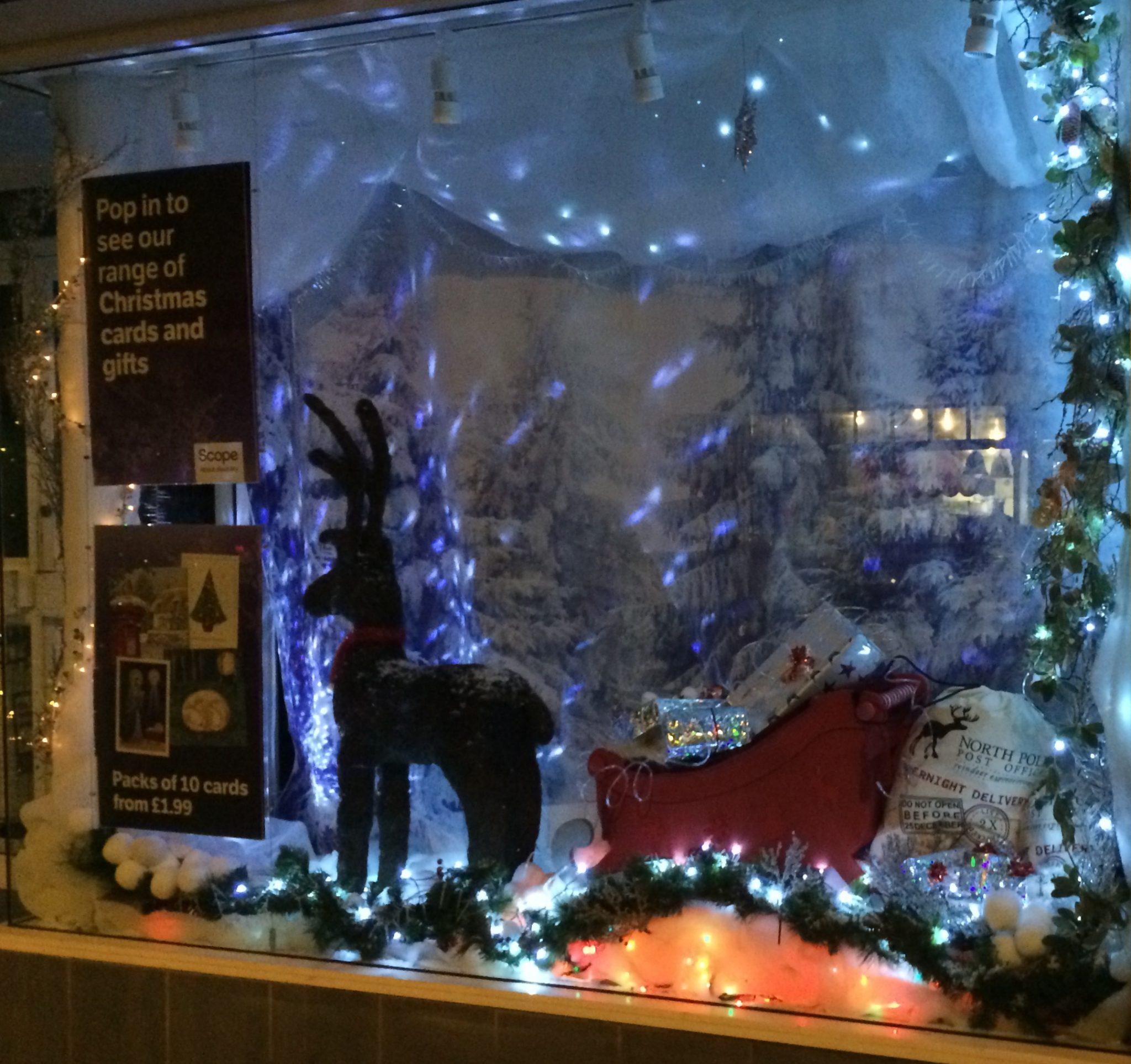 Charity Shops Excel In Christmas Window Dressing