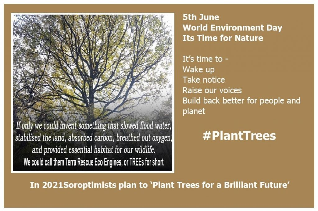 #PlantTrees for World Environment Day