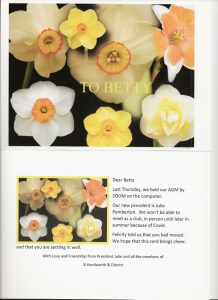 Photo of daffodils with text