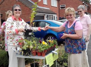 Plant stall with Ghyslaine and Corinne