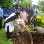Tree Plantation at QMTI