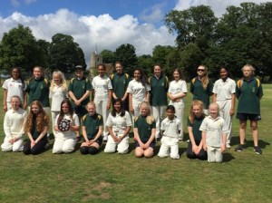 36-Cricket 2016 Abbots Langley and Stevenage Teamsweb